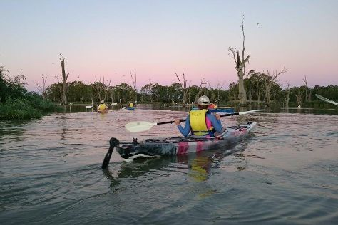 Canoe the Riverland, Paringa, Australia