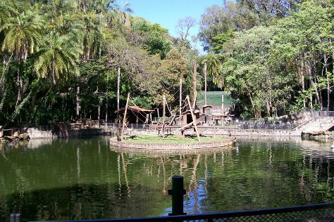 Bosque dos Jequitibas, Campinas, Brazil