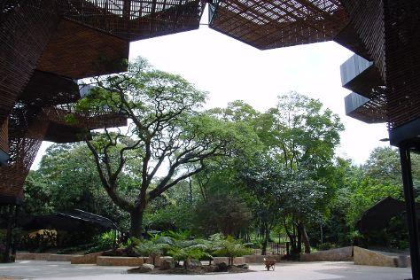 Jardin Botanico de Medellin, Medellin, Colombia