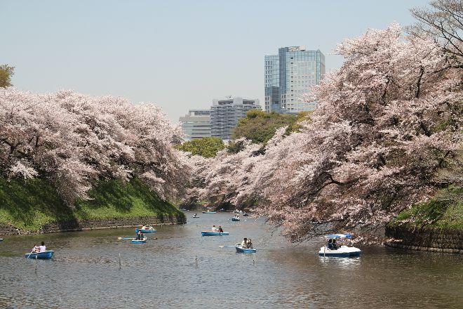 Chidori-ga-fuchi, Chiyoda, Japan